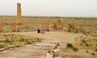 Urfa'nın Etrafı, Expo'ya Damgasını Vurdu