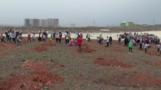 Suriyeli Mültecilerin Urfa'da Artık Dikili Ağaçları Var