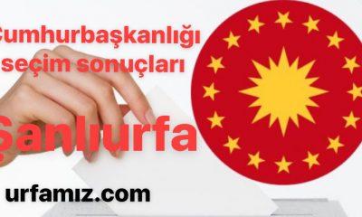 Şanlıurfa Cumhurbaşkanlığı seçim sonuçları