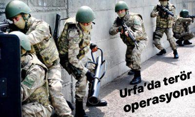 Urfa'da terör operasyonu çok sayıda gözaltı.