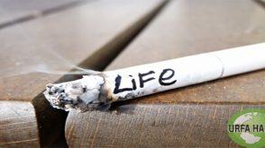 Sigara içenleri ne tehdit ediyor?