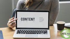Siteniz için ücretsiz ve kaliteli içerik nasıl edinilir?
