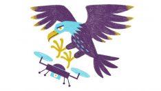 Kuşlar ve dronlar arasında bir savaş olacak mı?