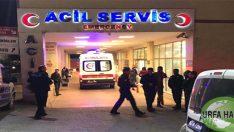 Şanlıurfa'da Otomobil Şarampole Devrildi: 1 Ölü, 4 Yaralı