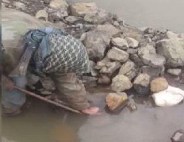 Kayalıklara sıkışan yılanı böyle kurtardı