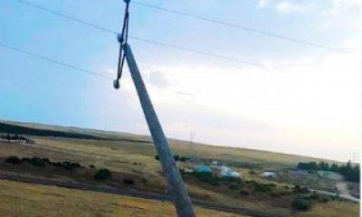 Şanlıurfa'da fırtına hasara neden oldu