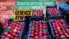 Rusya 20 ton nektarini geri yolladı