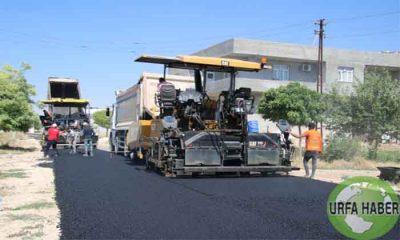 Şanlıurfa'da asfalt çalışmaları devam ediyor