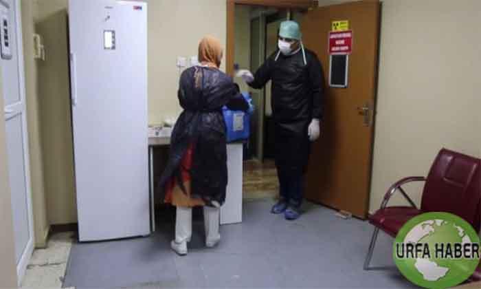 Urfa'da Covid-19 Laboratuvarı çalışmalara devam ediyor